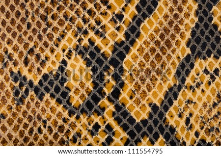 Closeup of snake Skin Leather Texture.