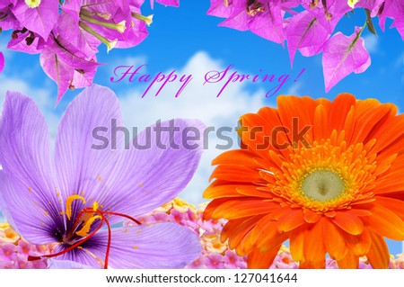 closeup of some flowers, such as verbenas or bougainvillea, above the sky and the sentence happy spring