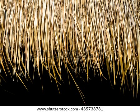 closeup of thatch roof background
