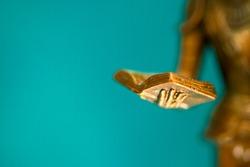 Closeup of the hand of a bronze statue holding an open book.  Sculpture closeup. Small depth of field