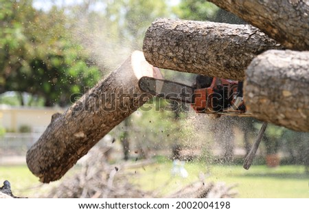 Closeup of timber cutting by chain-saw using by lumberman in bright sunny day. Stock photo ©