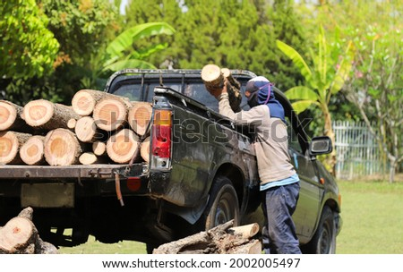 Closeup of timber on pickup car and lumberman with natural background in sunny day. Stock photo ©