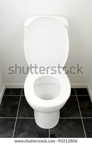 Closeup of toilet, lid open