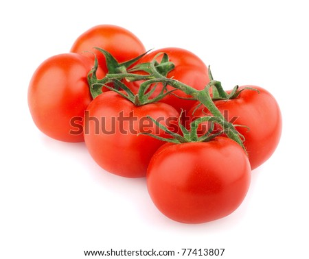 Closeup of tomatoes on the vine isolated on white