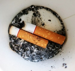 Closeup of two cigarette butts and their ashes, at the bottom of the white paper cup. Concept of smoking addiction