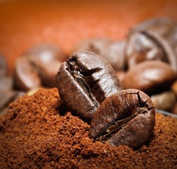 Closeup of two coffee beans at roasted coffee heap. Coffee bean on macro ground coffee background. Arabic roasting coffee - ingredient of hot beverage.