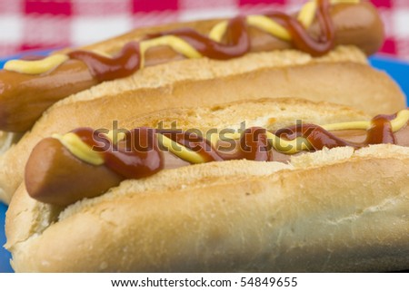 Closeup of two delicious hot dogs.