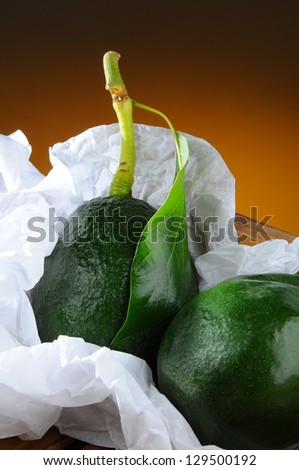 Closeup of two fresh picked avocados with stem and leaf in a wood packing crate and tissue paper. Vertical format with a light to dark warm background.
