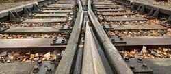 CloseUp of Two railways merge in to one railway.Close up of Two railroads merge into one railroad. Autumn leaves on railway (railroad). Close up of railroad (railway).
