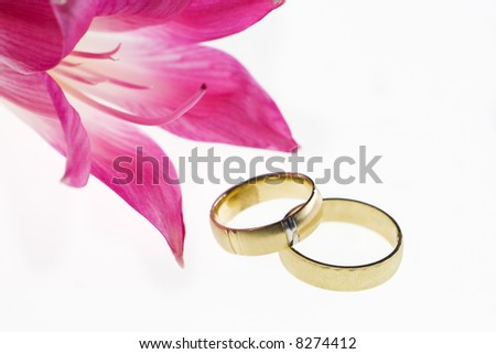 Closeup of wedding bands and red flower on a white background