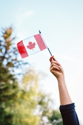 Closeup of white Caucasian woman hand arm waving red white Canadian flag with maple leaf on blue sky and green forest. Citizen celebrating national holiday on 1st of July.