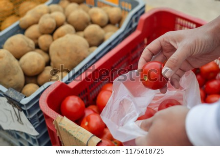 Closeup on person choosing tomato vegetables, shopping stall grocery food background. Buying natural tasty healthy ingredients. background. Supply colorful production, marketplace consumerism commerce
