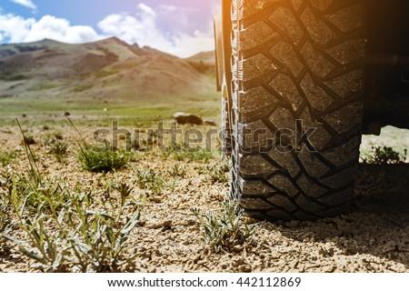 Closeup photo of car wheel on steppe terrain  #442112869
