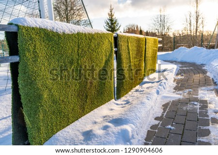 Closeup Photo of the Fake Soccer Field Grass in the Winter Covered in Snow - Sunny Winter Day, Concept of Winter Sports and Game