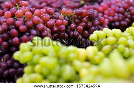 Closeup photography on grape bunches with blurred background