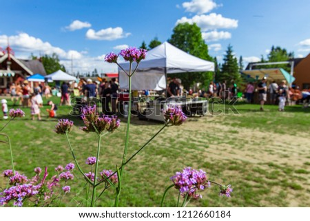 Closeup picture of purple hogweed flowers with many people talking, walking and shopping around in the background - Wide angle picture shot at a family music festival in Quebec Canada