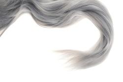 closeup piece of grey hair