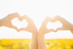Closeup point of view photography of two people making heart gestures by their hands isolated on sunny sunset sky background. Pov photo of boyfriend and girlfriend showing symbol of love and affection