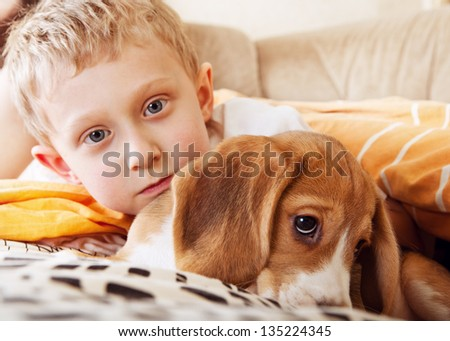 Closeup portrait boy with beagle puppy in the bed