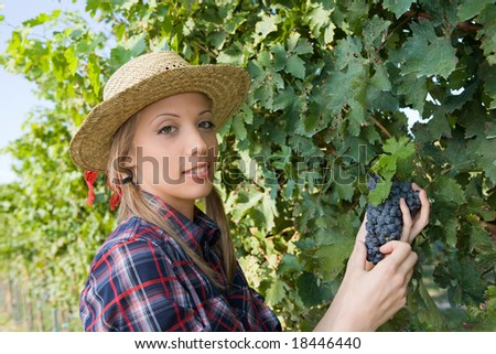 Closeup portrait of a happy young peasant woman during the harvest among the vineyards
