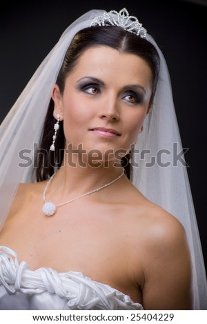 stock photo : Closeup portrait of a young bride wearing white wedding veil,