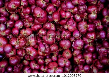 closeup red onion in market #1012005970
