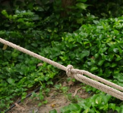 Closeup rope tied in knot in slant position in garden