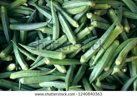 Closeup shot of bamia. Musk okra texture. Indian vegetadles backgroung. Gumbo.