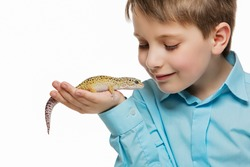 Closeup shot of boy holding pet lizard on his hand. Isolated over white background.