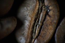 Closeup shot of coffee bean. background, texture