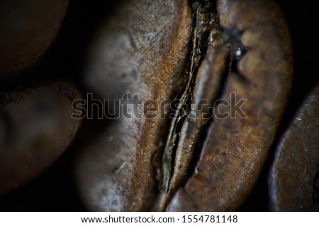 Closeup shot of coffee bean. background, texture Foto d'archivio ©