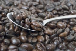 Closeup shot of coffee beans on teaspoon