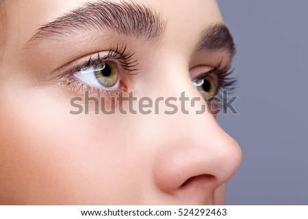 Closeup shot of female face makeup - Shutterstock ID 524292463