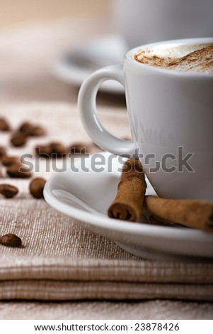 Closeup shot of freshly prepared cup of italian cappuccino with rich milk foam sprinkled with cinnamon.