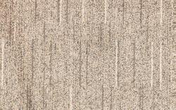 Closeup surface of brown carpet texture background , carpet at the seminar room , carpet pattern
