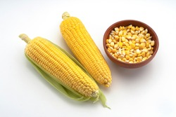 Closeup top view showing a pair of  Sweet Corn,Maize, Zea Mays, with seeds in wooden bowl displayed against  white background,