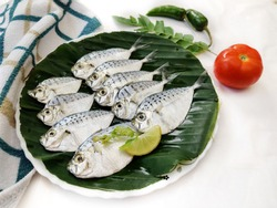Closeup view of Fresh Pony Fish decorated with herbs and vegetables on a wooden pad,Selective focus.White Background.