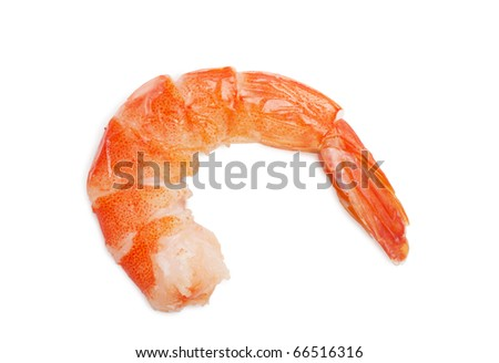 Closeup view of shrimp isolated on the white background