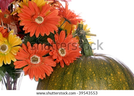 Closeup view of the top of a pumpkin changing colors and some artificial flowers next to it, isolated against a white background