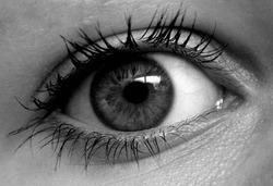 Closeup woman's eye in grey scale