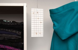 Cloth moth trap in closet or wardrobe.   Pest control prevention. Clothes moth or webbing clothes moth (Tineola bisselliella). The non-toxic sticky trap attracts male moths with pheromones.