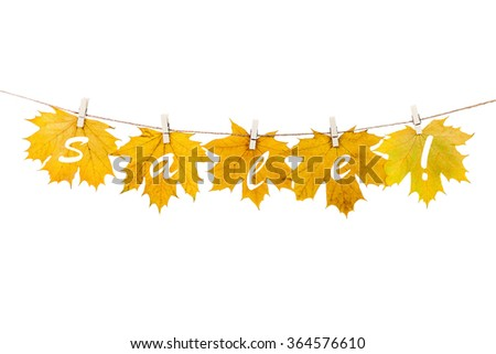clothespins on the rope holding autumn leaves on a white background #364576610