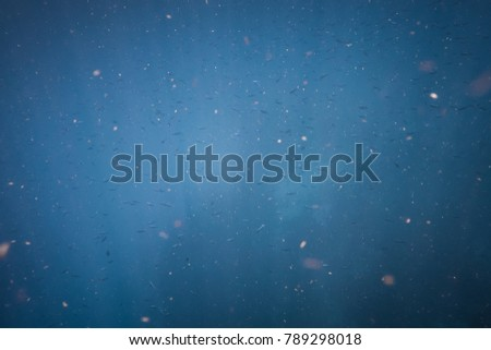 Cloud of Fish in the Deep Blue Ocean with Rays of Light