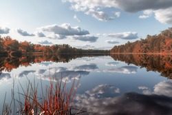 Clouds are reflecting in the surface of Batsto Lake #newjersey #pinebarrens #ilovelakes #whartonstateforrest #landscapes