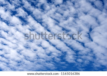 Clouds, Cirrus floccus, in front of blue sky