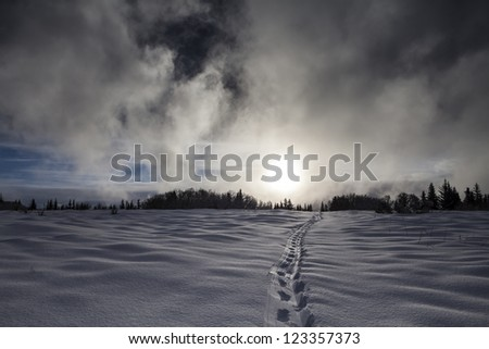Clouds from a coming storm cover the sun in rural Alaska in winter with a path through the snow in the foreground.