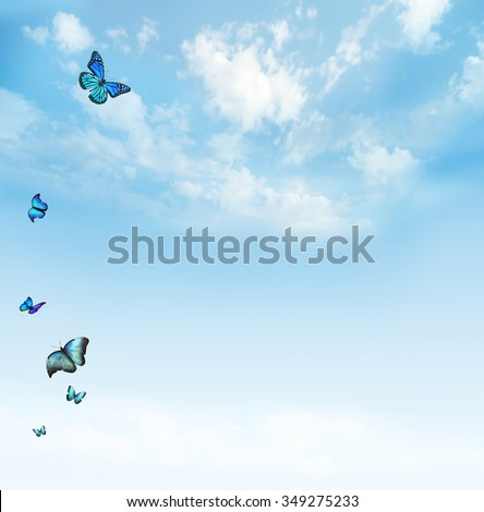 Clouds in the blue sky with butterflies