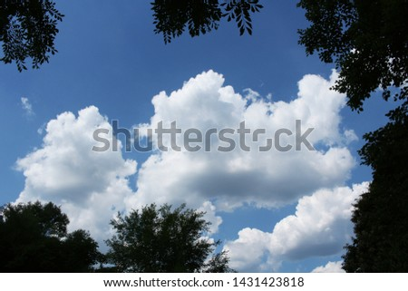 clouds of clear and clear sky #1431423818