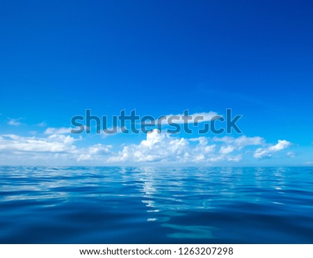 clouds on blue sky over calm sea with sunlight reflection #1263207298