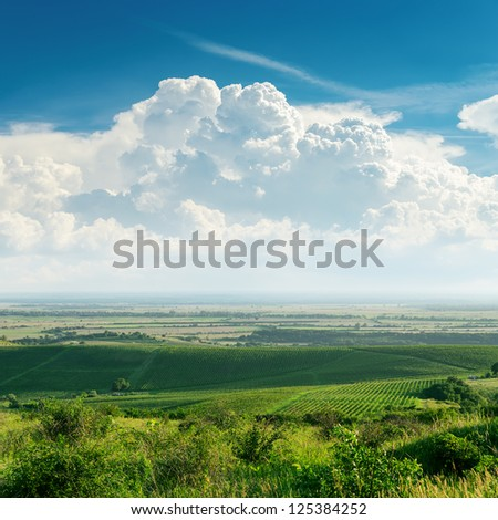 clouds over green vineyard. Ukraine, Trans-carpathian region